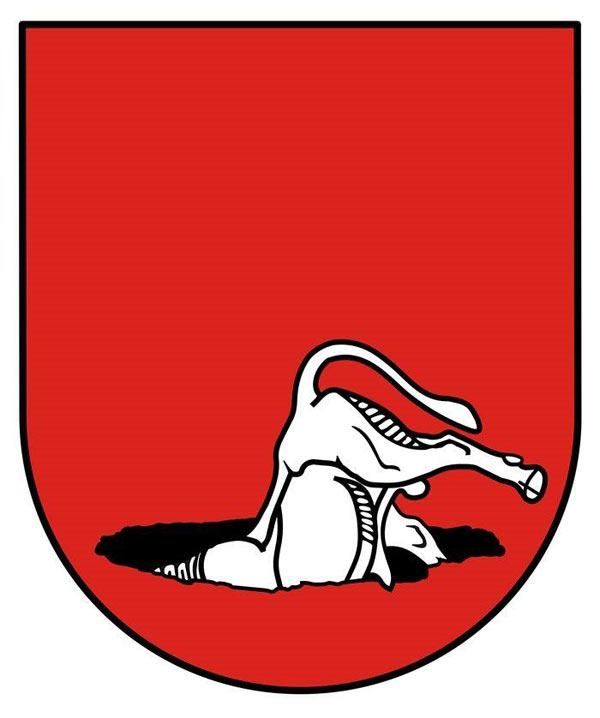 kauno-herbas-2013