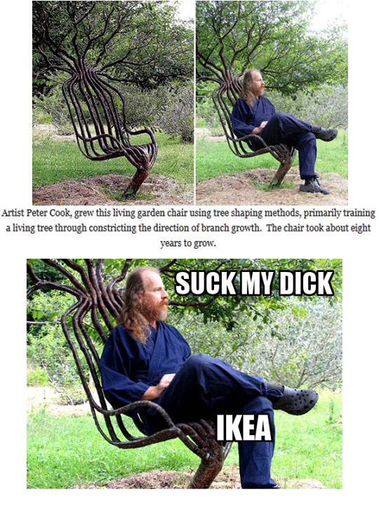 suck-my-dick-ikea-tree-chair