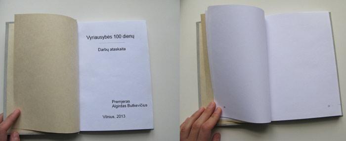 vyriausybes-100d-ataskaita