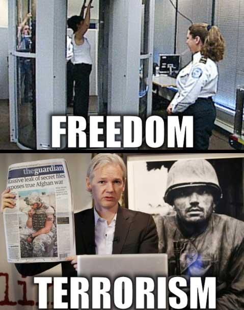 pilietinis pasaulio karas: WikiLeaks
